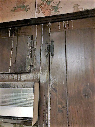Wood Water Damage