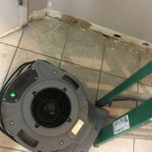 water damage restoration tribeca humidifier