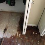 Water Damage Closet Floor